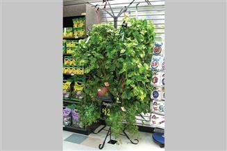 Hanging Plant Tree