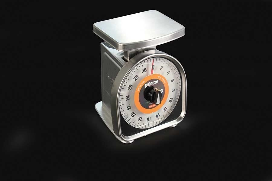 Fixed Dial Portion Control Scale, Aluminum